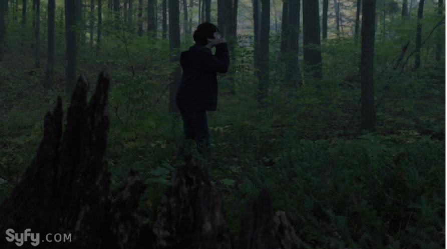 Sam Lost in the Forest of Time