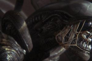 xenomorph-header