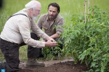 WD 401 Farming