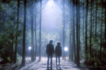 vampire_diaries_season_5-22-damon-y-bonnie