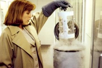 x-files-Erlenmeyer-Flask
