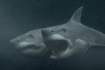 2-headed-shark-attack-header